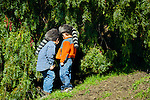 Country boys checking their pepper  tree fort on the ranch in  San Luis Obispo, California