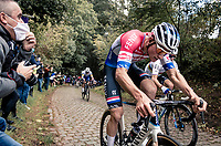Dutch National Champion Mathieu Van der Poel (NED/Alpecin-Fenix) & World Champion Julian Alaphilippe (FRA/Deceuninck-QuickStep) battling it out up the mean (and newly introduced) Moskesstraat cobbles<br /> <br /> 60th De Brabantse Pijl 2020 - La Flèche Brabançonne (1.Pro)<br /> 1 day race from Leuven to Overijse (BEL/197km)<br /> <br /> ©kramon
