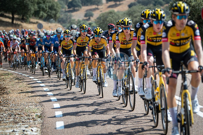 The peloton led by Jumbo-Visma during Stage 14 of La Vuelta d'Espana 2021, running 165.7km from Don Benito to Pico Villuercas, Spain. 28th August 2021.     <br /> Picture: Cxcling   Cyclefile<br /> <br /> All photos usage must carry mandatory copyright credit (© Cyclefile   Cxcling)