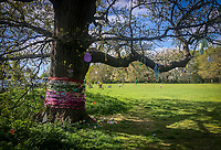 A tree is decorated by local residents in a village with positive messages and thank you to the NHS during Easter bank holiday Monday during the Covid-19 Pandemic as the UK Government advice to maintain social distancing and minimise time outside in High Wycombe on 13 April 2020. Photo by PRiME Media Images.