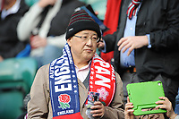 A Japanese fan looks on during the Quilter International match between England and Japan at Twickenham Stadium on Saturday 17th November 2018 (Photo by Rob Munro/Stewart Communications)