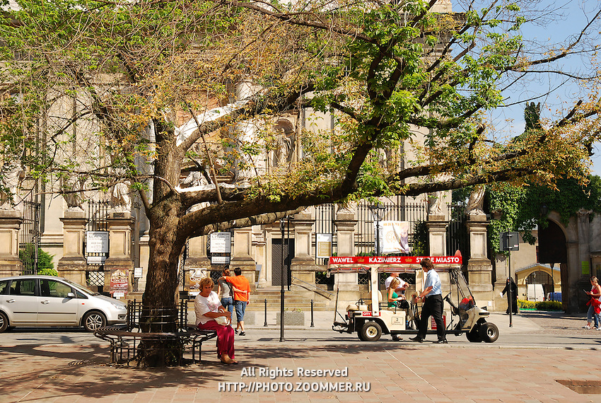 Krakow main street in old town. Sightseeing bus under the tree.