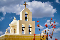 Mission San Xavier del Bac chapel with ocotillo blooming. Arizona
