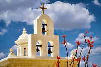 Mission San Xavier del Bac chapel with ocotillo blooming. Arizona