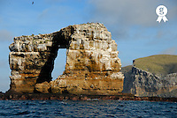 Ecuador, Galapagos Islands, Darwin Island, Rock formation at coastline (Licence this image exclusively with Getty: http://www.gettyimages.com/detail/sb10061764b-001 )