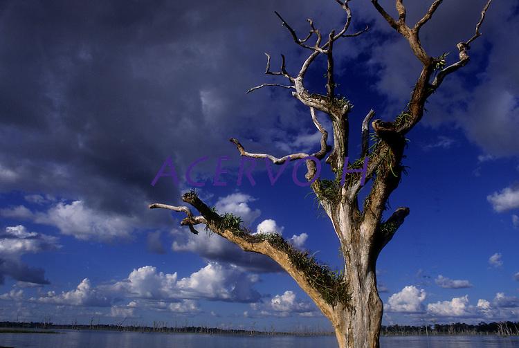 Lago de Tucuruí.<br /> Foto Paulo Santos