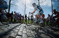 De Ronde van Vlaanderen 2012..Tom Boonen smoothly over the cobbles