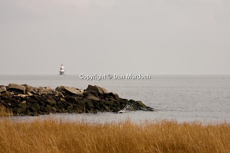 Shorescape of distant lighthouse