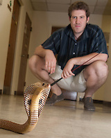 130729-N-DR144-547 - Gerad Fox, a graduate student at Loma Linda University's Center for Biodiversity and Conservation, works with an Indian Cobra.