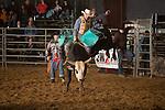 SEBRA - Raphine, VA - 2.8.2014 - Bulls & Action