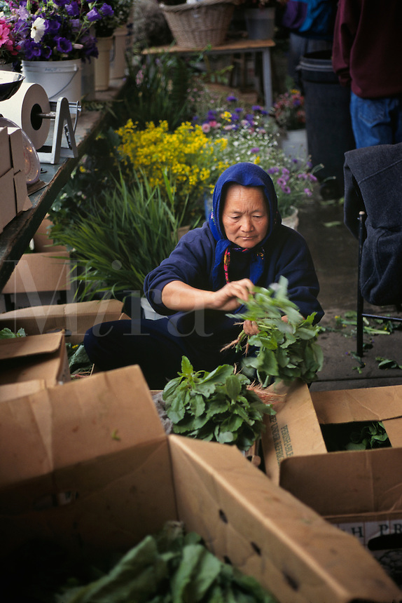 Laotion (Hmong) Woman Sorts & Prepares Greens Grown At Family Farm For Sale At Farm Table; Pike Place Market; Seattle, Washingto