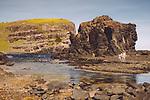 Image Ref: CA973<br /> Location: Bushrangers Bay Track<br /> Date of Shot: 28.09.19