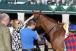 "October 08, 2014:  Rainha Da Bateria and jockey Joel Rosario win the 24th running of the JPMorgan Chase Jessamine Grade 3 $150,000 ""Win and You're In Juvenile Fillies Turf Division"" at Keeneland for owner Three Chimneys Farm and grainer H. Graham Motion.  Candice Chavez/ESW/CSM"