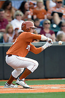 Texas Longhorns outfielder Mark Payton #15 lays down a sacrifice bunt against the Texas A&M Aggies in NCAA Big XII Conference baseball on May 21, 2011 at Disch Falk Field in Austin, Texas. (Photo by Andrew Woolley / Four Seam Images)