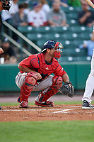 Pawtucket Red Sox catcher Dan Butler (12) waits to receive a pitch during a game against the Rochester Red Wings on May 19, 2018 at Frontier Field in Rochester, New York.  Rochester defeated Pawtucket 2-1.  (Mike Janes/Four Seam Images)