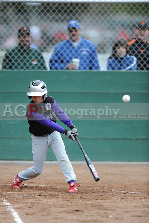 The AAA Rockies play on opening day in Pleasanton National Little League  March 14, 2009.