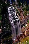 Narda Falls near Longmire, Mt. Rainier National Park.