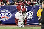 The Arkansas Razorbacks mascot in action during the Advocare V100 Texas Bowl game between the Arkansas Razorbacks and the Texas Longhorns at the NRG Stadium in Houston, Texas. Arkansas defeats Texas 31 to 7.
