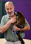 Gabe Kerschner, with Conservation Ambassadors, shows off Samantha, a lemur, during a presentation at the Boys & Girls Club of Western Nevada in Carson City, Nev., on Tuesday, June 12, 2018 as part of the Carson City Library's Summer Learning Challenge. <br /> Photo by Cathleen Allison/Nevada Momentum