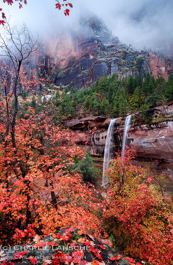 Season's Greetings from C.M. Lansche Images! Wishing you and yours a wonderful holiday season filled with love, joy, peace and gratitude. Zion National Park, Utah.