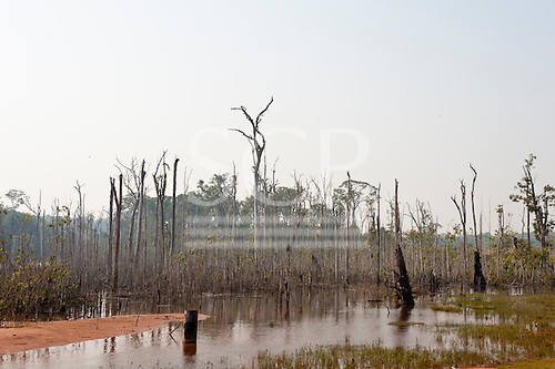 Mato Grosso State, Brazil. Deforested area with dead trees drowned by the blocking of a valley by road building.