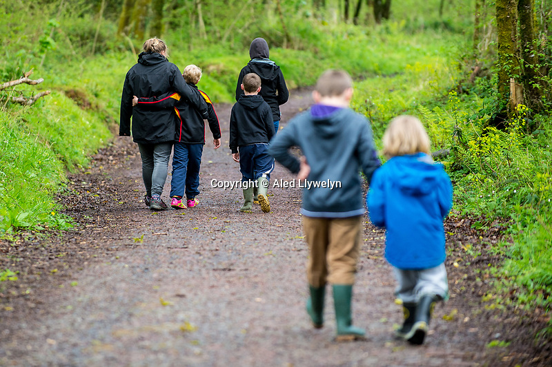 Monday  01 May 2017 Pictured: A family walks through woodland in Canaston Bridge, Pembrokeshire