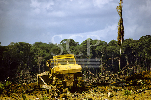 Para State, Amazon, Brazil; bulldozer clearing forest, leeaving a devastated landscape with a single dead palm tree.