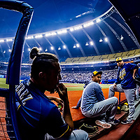 25 March 2019: Milwaukee Brewers outfielder Hernan Perez sits on the dugout steps prior to an exhibition game against the Toronto Blue Jays at Olympic Stadium in Montreal, Quebec, Canada. The Brewers defeated the Blue Jays 10-5 in the first of two MLB pre-season games in the former home of the Montreal Expos. Mandatory Credit: Ed Wolfstein Photo *** RAW (NEF) Image File Available ***