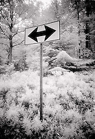 Two way road sign<br />