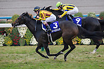 KYOTO,JAPAN-NOVEMBER 13: Queens Ring #3,ridden by Mirco Demuro,wins the Queen Elizabeth II Cup at Kyoto Racecourse on November 13,2016 in Kyoto,Kyoto,Japan (Photo by Kaz Ishida/Eclipse Sportswire/Getty Images)