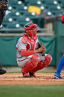 Syracuse Chiefs catcher Pedro Severino (29) during a game against the Buffalo Bisons on May 18, 2017 at Coca-Cola Field in Buffalo, New York.  Buffalo defeated Syracuse 4-3.  (Mike Janes/Four Seam Images)