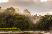 Landscape with a rainforest in fog on the bank of the San Juan River, El Castillo, Rio San Juan Department, Nicaragua