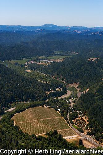 Aerial photograph Russian River Sonoma Coast Pinot Noir vineyards