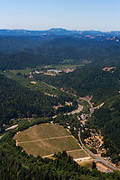 Aerial Photos Sonoma Coast Pinot Noir Vineyards