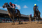 July 31, 2020: Unholy Alliance #3, ridden by Tyler Gaffalione wins an allowance optional claiming race on July 31 at Saratoga Race Course in Saratoga, New York. Rob Simmons/Eclipse Sportswire/CSM