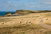 The south-west coastal path near Padstow in North Cornwall.