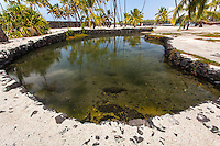 Heleipalala Fishpond in Pu'uhonua o Honaunau National Historical Park, Big Island