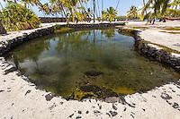 Heleipalala Fishpond in Pu'uhonua o Honaunau National Historical Park, Big Island