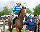 4th David Semmes Memorial Hurdle Stakes - Schoodic
