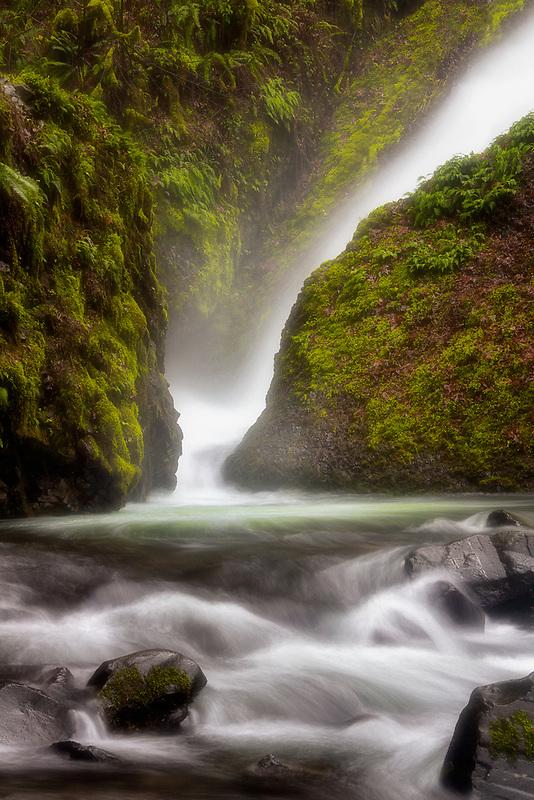 Green moss at Bridal Veil Falls, OR