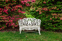 Charming garden bench with autumn foliage.