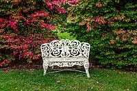 Charming garden bench with autumn foliage.
