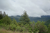 Clouds on Cascade Mountain Tops