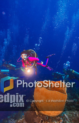 26 July 2015: SCUBA Diver Sally Herschorn finds a barrel sponge (Xestospongia muta) near the pinnacle at Ghost Mountain, on the North side of Grand Cayman Island. Located in the British West Indies in the Caribbean, the Cayman Islands are renowned for excellent scuba diving, snorkeling, beaches and banking.  Mandatory Credit: Ed Wolfstein Photo *** RAW (NEF) Image File Available ***
