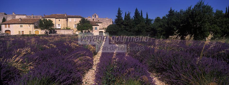 Europe/France/Rhône-Alpes/26/Drôme/Salles-sous-Bois:  Champ de lavande et veux village avec son prieuré et ses vieilles demeures