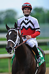 25 May 2009 : Dubai Majesty with Jamie Theriot in the irons takes the 6th running of the G3 Winning Colors stakes at Churchill Downs in Louisville, Kentucky.