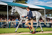 NZL-Will Coleman presents Tight Linges during the First Horse Inspection. 2019 GBR-Land Rover Burghley Horse Trials. Wednesday 4 September. Copyright Photo: Libby Law Photography
