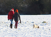 With snow having fallen over much of the south and east of the country on Sunday, the sun came out for Monday. Blue Skies and sunshine made the smallest things look picturesque. <br /> Bedford had it's first significant snowfall in several years. Bedford, UK January 24th and 25th 2021<br /> <br /> Photo by Keith Mayhew