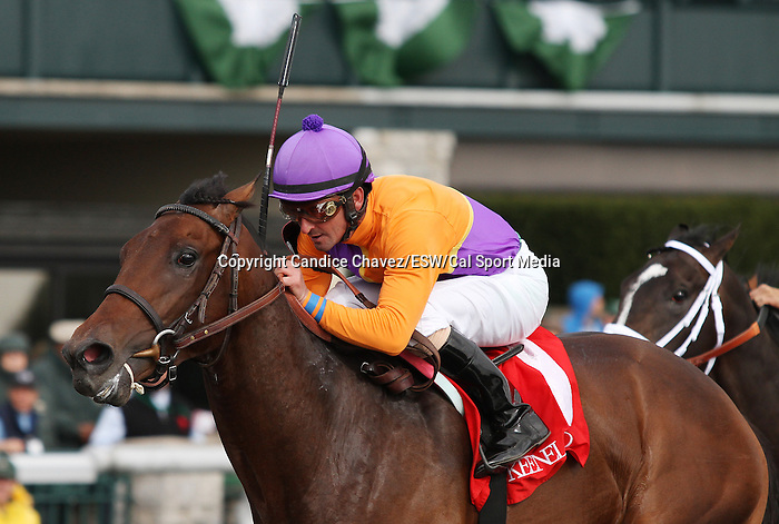 April 04, 2014: Medal Count and jockey Robby Albarado win the 26th running of The Transylvania Grade 3 $100,000 at Keeneland Racecourse for owner Spendthrift Farm and trainer Dale Romans.  Candice Chavez/ESW/CSM
