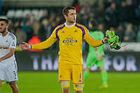 Saturday 29th November 2014<br /> Pictured: Lukasz Fabianski of Swansea City City applauds  leaves the field <br /> Re: Barclays Premier League Swansea City v Crystal Palace at the Liberty Stadium, Swansea, Wales,UK